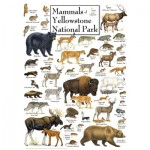 Puzzle   Mammals of Yellowstone National Park