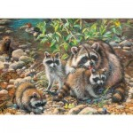 Puzzle  Cobble-Hill-54607 XXL Teile - Raccoon Family