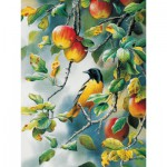 Puzzle  Cobble-Hill-80156 Susan Bourdet: Northern Oriole