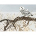Puzzle  Cobble-Hill-85031 XXL Teile - Fallen Willow Snowy Owl