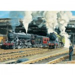 Puzzle  Jumbo-11120 Trevor Mitchell - Full Steam Ahead