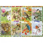 Puzzle  Jumbo-11157 Seasonal Garden Birds