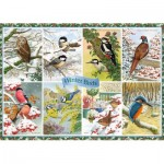 Puzzle  Jumbo-11234 Winter Birds