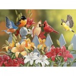 Puzzle  Sunsout-30479 XXL Teile - William Vanderdasson - Birds on a Fence