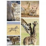 Puzzle  Nathan-87150 Wilde Tiere Babys