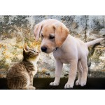 Puzzle   Kitten and Puppy