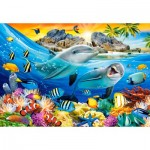 Puzzle  Castorland-104611 Dolphins in the Tropics