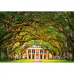 Puzzle   Oak Alley Plantation