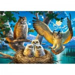 Puzzle   Owl Family