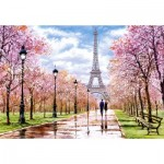 Puzzle   Romantic Walk in Paris