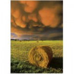 Puzzle  Heye-29550 Power of nature: Rising Storm
