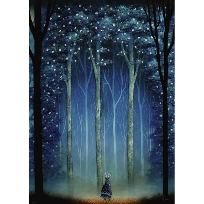 Andy Kehoe - Forest Cathedral