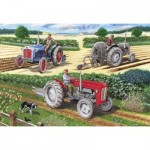 Puzzle   The Ploughing Match