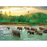 Puzzle   Save our Planet Collection - Regenwald