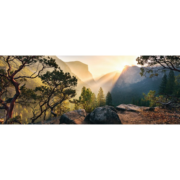Nature Edition N°10 - Yosemite Park