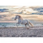 Puzzle  Ravensburger-16586 Horse on the Beach