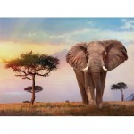 Puzzle   African Sunset