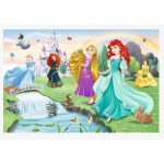 Puzzle   Meet the Princesses