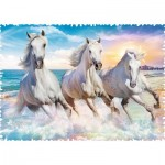 Puzzle  Trefl-11111 Crazy Shapes -  Galloping among the Waves