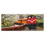 Puzzle aus Kunststoff - Forest Train in Alishan National Park