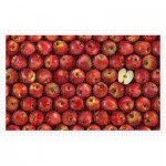 Puzzle aus Kunststoff - Fruits - Apple