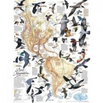 Puzzle  New-York-Puzzle-NG1715 Bird Migration
