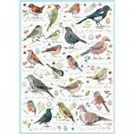 Puzzle   Birdsong