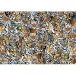 Otter-House-Puzzle-72925 Impossible Puzzle - Tigers