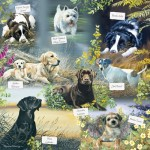 Puzzle  Otter-House-Puzzle-74126 Man's Best Friend