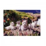 Puzzle  The-House-of-Puzzles-0786 Westies
